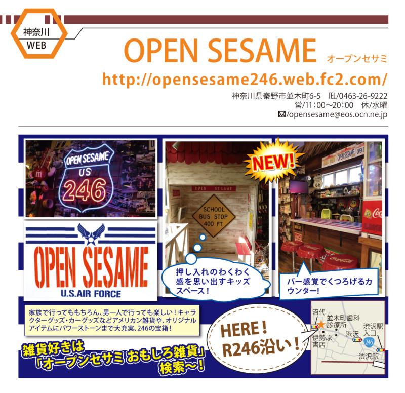 OPEN_SESAME